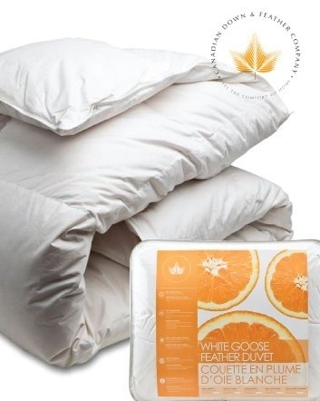 $39 and Up for a White Goose Feather Duvet – 4 Sizes Available!