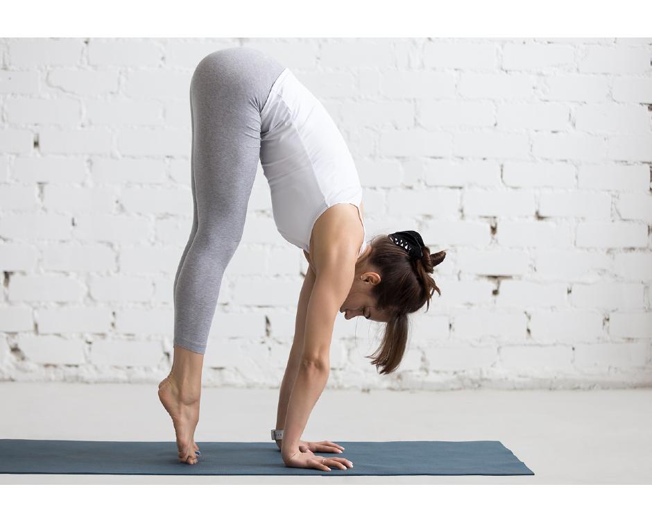$19 & Up for Yoga Classes at Chandra Yoga Shala | Buytopia